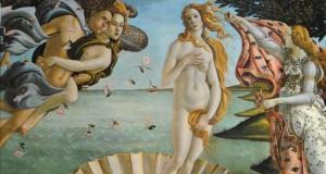 Narodziny króliczka Venus