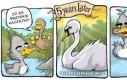 Brzydkie kaczątko - historia prawdziwa