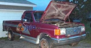 Stary Ford przerobiony na Hummera
