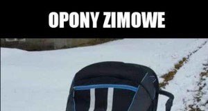 Zimowy spacer