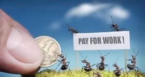 Dawno temu w trawie: Życie mrówek