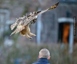 Melduję lądowanie!