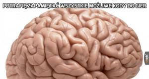 Dlaczego, mózgu?