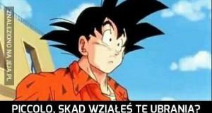 Pogódź się z tym, Goku...