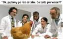 Jajko czy kura?
