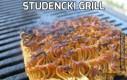 Studencki grill