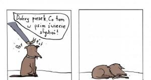 Co tam w psim świecie słychać?