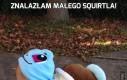 Znalazłam małego Squirtla!