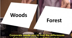 Gdzie pieniądze są za woods / forest?