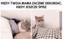 Kiedy Twoja mama zacznie odkurzać, w czasie kiedy jeszcze śpisz