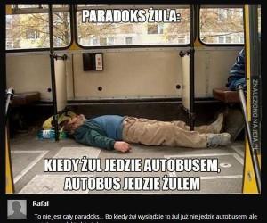 Paradoks żula