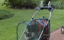 Wózek dla kota