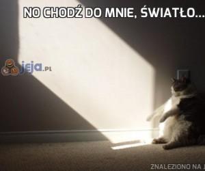 No chodź do mnie, światło...
