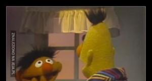 Ernie doznał szoku