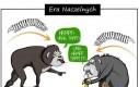 Ewolucja kręgów i komunikacji