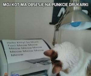 Mój kot ma obsesję na punkcie drukarki