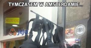 Tymczasem w Amsterdamie...