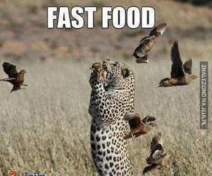 Naturalny fast-food