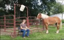 Koński asystent przy Ice Bucket Challenge