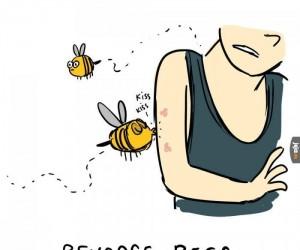 Pszczoły na opak