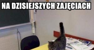 Koteł uczy