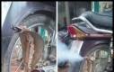 Kobra wydechowa