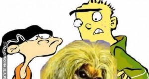 Ed, Ed i Eddie