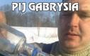 Pij Gabrysia