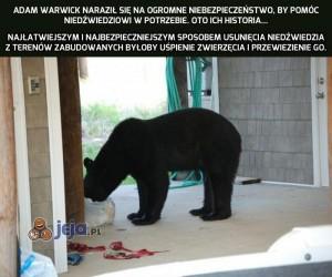 Mężczyzna, który uratował niedźwiedzia