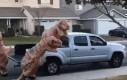 Znowu te przeklęte dinozaury!