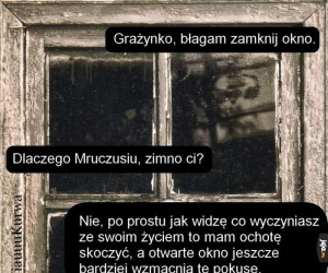 Zamknij okno