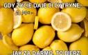Gdy życie daje Ci cytrynę...