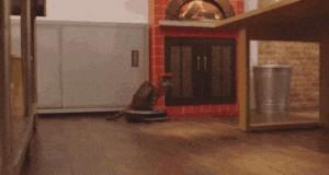 W pizzerii zatrudnili nowego sprzątającego