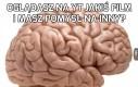 No i po co mi taki mózg?