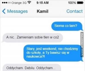 Niektórym nawet nie warto tłumaczyć