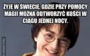 Harry Potter i Czara Bezsensu