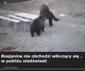 Niedźwiedź lubi ryzyko