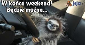 W końcu weekend!