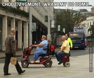 Chodź, Zygmunt, wracamy do domu...