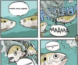 Mem na czasie