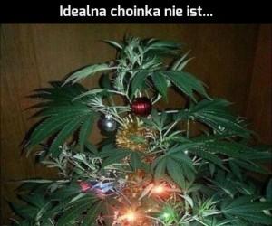 Śmiesznych świąt!
