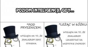 Poziom inteligencji w różnych sytuacjach