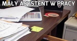 Mały asystent w pracy