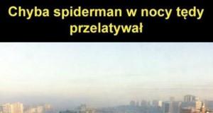 Spiderman tu był