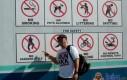 Nie wszyscy lubią Gangnam Style