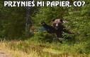 Muszę zostawić papierzaka w lesie