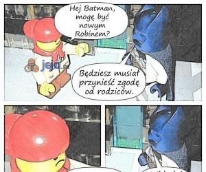 Nowy Robin