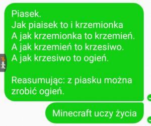 Minecraft uczy i bawi