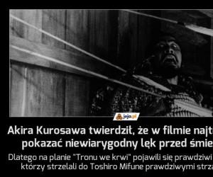 Akira Kurosawa twierdził, że w filmie najtrudniej pokazać niewiarygodny lęk przed śmiercią