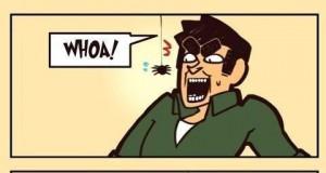 Ja kontra pająki